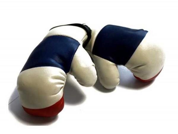 Miniboxhandschuhe - Frankreich