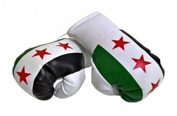 Miniboxhandschuhe - Syrien